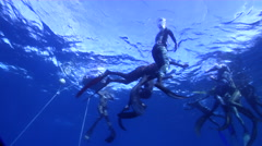 Freedivers freediving on water surface in Australia, HD, UP30980 Stock Footage