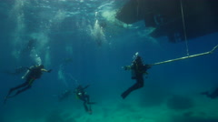 Group of scuba divers making a safety stop on water surface in Australia, HD, Stock Footage
