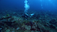 Housed SLR photographer taking images on deep coral reef in Indonesia, HD, Stock Footage