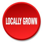 Locally grown red round flat isolated push button Stock Illustration