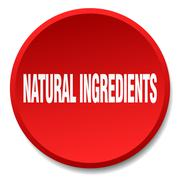 natural ingredients red round flat isolated push button - stock illustration