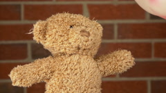 Gasoline poured onto stuffed teddy bears head 4k Stock Footage