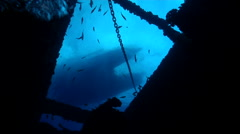 Ocean scenery boat hull shot from inside wreck 26m below, fish swimming above, Stock Footage