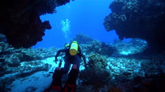 Muppet diver swimming in cavern in Australia, HD, UP20435 Stock Footage