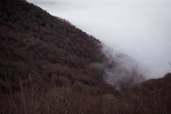 Timelapse clouds and shadows mixing in winter trees of Appalachian Mountains Stock Footage