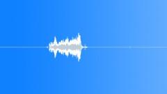 Quick Short Zipper Sound Effect