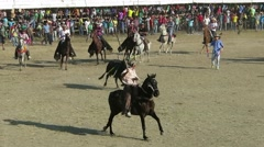 Bull pierced with spears runs across the arena Stock Footage
