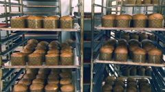 Fresh bread in trays at the bakery. Stock Footage
