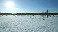 Sun shining brightly at a wintertime bog lanscape, low altitude aerial shot Stock Footage