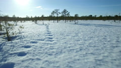 Low aerial moving shot near snow surface with animal track at a natural bog in Stock Footage