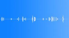Sound Design | Beeps Blurps || Beeps,Sci-Fi,Blip,High,Beat,Low - sound effect