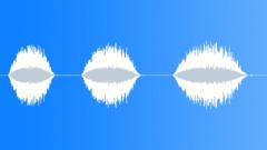Vocal, Processed || Sound Design - Vocals - Female - Breaths - Inhale, Dry - sound effect