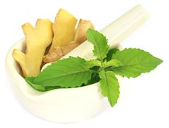 Ayurvedic combination of holy basil and ginger - stock photo