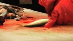 Woman cuts small fish at the fish market in Busan, Korea. Stock Footage