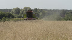 Two harvesters on cornfield Stock Footage