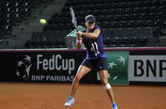 Tennis player Alexandra Dulgheru training before a match Stock Photos