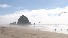 Beautiful Day At Cannon Beach Stock Footage