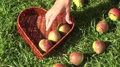 Female hand put pear fruit heart shape basket on green grass. 4K Stock Footage