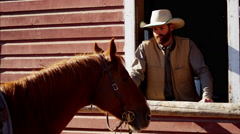 Stock Video Footage of Cowboy Ranch hand bonding with horse on Dude Ranch USA