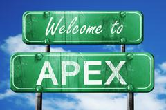 apex vintage green road sign with blue sky background - stock illustration