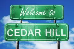 Cedar hill vintage green road sign with blue sky background Stock Illustration