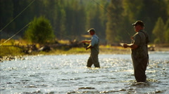 Canadian males fly fishing in competition on freshwater river - stock footage