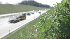 Highway. Green plants - stock footage