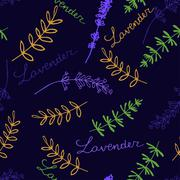 Stock Illustration of Lavender Seamless pattern