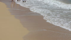 Multi-generation family running on beach together Stock Footage