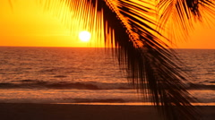 Woman walks along tropical beach at sunset Stock Footage