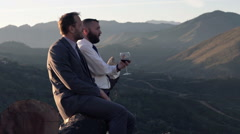 Two, happy businessmen with red wine talking sitting on tree trunk in country  Stock Footage