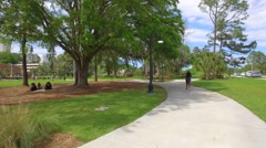 People playing in the park Stock Footage
