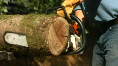 Man with chainsaw cutting log, slow motion Stock Footage