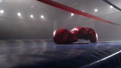 Boxing gloves laying in ring - stock footage