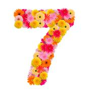 Flower number seven. Floral element of colorful alphabet made from gerbera Stock Photos
