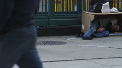 Bum in carboard box Stock Footage