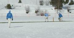 cricket on ice batting - stock footage