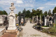 Monumental Cemetery Stock Photos