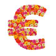Flower Euro sign isolated on white background - stock photo