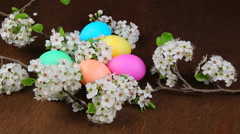 Easter eggs on a flowering tree branch Stock Footage
