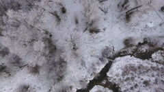 A high aerial shot of beautiful river and trees in forrest rotating Stock Footage