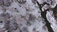 A high aerial shot of river and snowy trees rotating into clouds Stock Footage