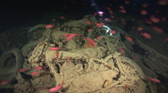 SS Thistlegorm 3 BSA motorbikes in a truckbed, Red Sea, Egypt Stock Footage