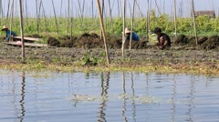 Travel by boats among the floating garden in Inle lake, Myanmar, Burma Stock Footage