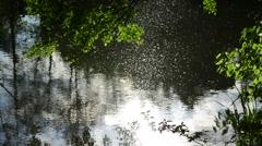 Light shining on the lake Stock Footage