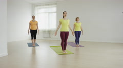 Slender fit women doing yoga on exercise - stock footage