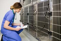 Vet monitoring sick rabbit in cage Stock Photos