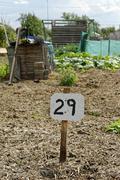 Vacant Plot, Allotment Garden Stock Photos