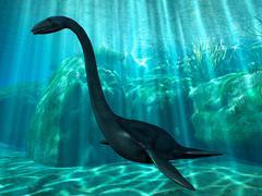 Elasmosaurus - stock illustration