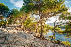 Beautiful nature of Calanques on the azure coast of France. Cala Stock Photos